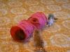 Tutti insieme cucciolata S 27/04/2011